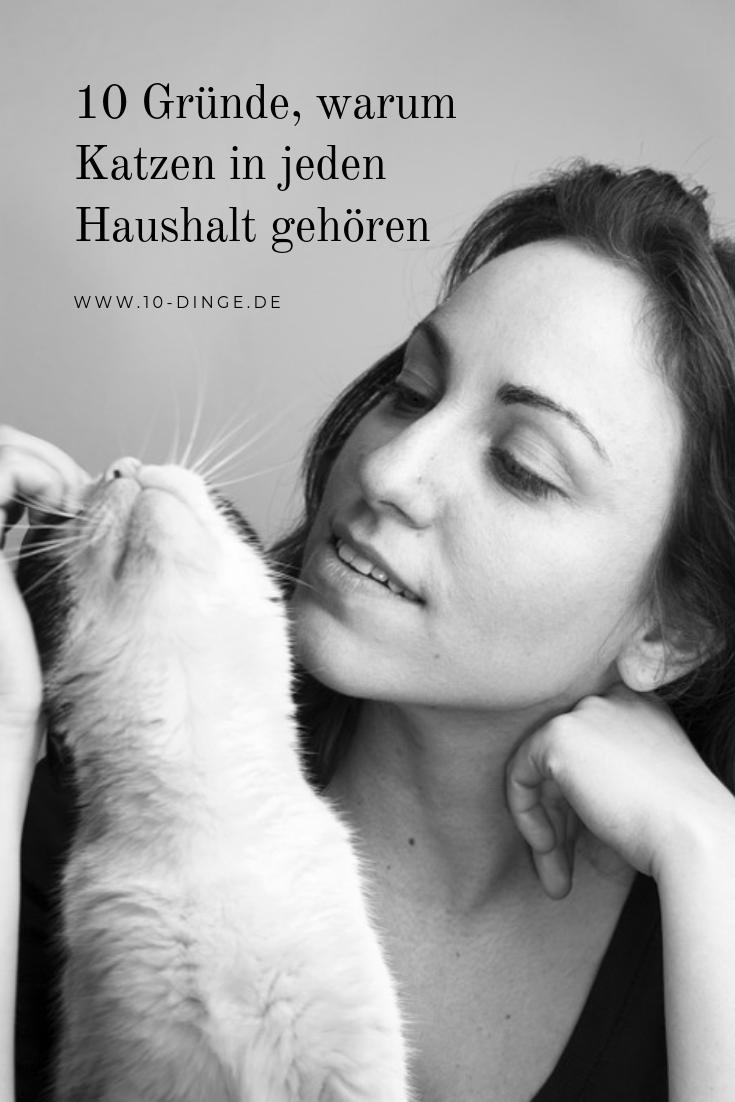 10 Gründe, warum Katzen in jeden Haushalt gehören
