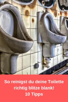 10 Tipps, wie Du die Toilette richtig reinigst